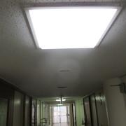 天井張替え工事